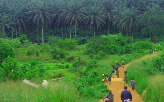 25-Sierra Leone