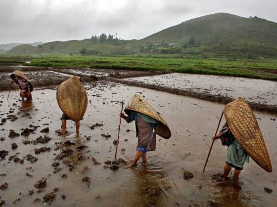 9-Wettest-India